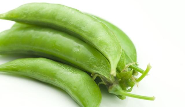 在来種/固定種/野菜の種「つるなしスナップえんどう」20ml約60粒/畑懐〔はふう〕