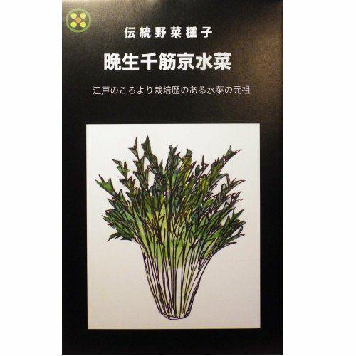 在来固定種野菜の種「千筋京水菜」8ml〔約2200粒〕畑懐〔はふう〕